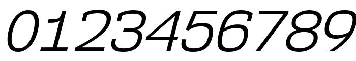 NK57MonospaceBk-Italic Font OTHER CHARS