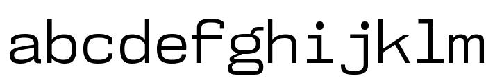 NK57MonospaceBk-Regular Font LOWERCASE