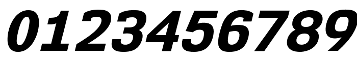 NK57MonospaceEb-Italic Font OTHER CHARS