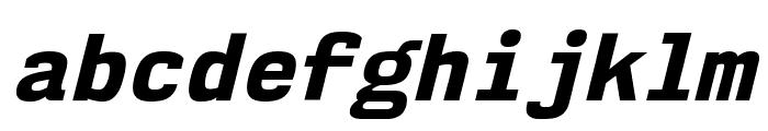 NK57MonospaceEb-Italic Font LOWERCASE