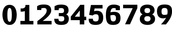 NK57MonospaceEb-Regular Font OTHER CHARS