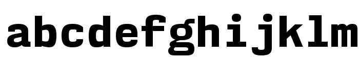 NK57MonospaceEb-Regular Font LOWERCASE
