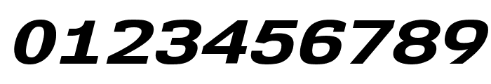 NK57MonospaceExEb-Italic Font OTHER CHARS