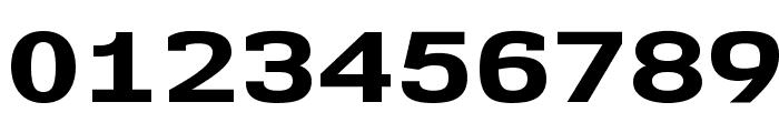 NK57MonospaceExEb-Regular Font OTHER CHARS