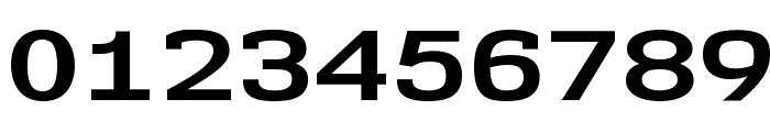 NK57MonospaceExRg-Bold Font OTHER CHARS