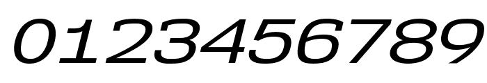 NK57MonospaceExRg-Italic Font OTHER CHARS