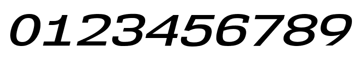 NK57MonospaceExSb-Italic Font OTHER CHARS