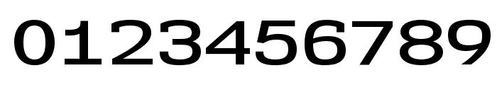NK57MonospaceExSb-Regular Font OTHER CHARS