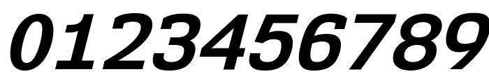 NK57MonospaceRg-BoldItalic Font OTHER CHARS