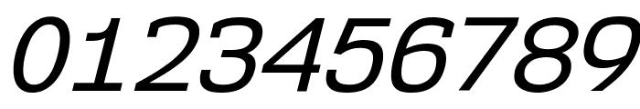 NK57MonospaceRg-Italic Font OTHER CHARS