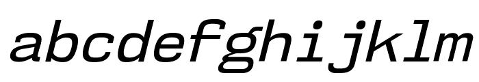 NK57MonospaceRg-Italic Font LOWERCASE