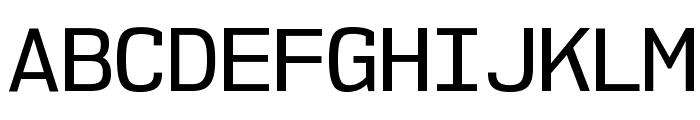 NK57MonospaceRg-Regular Font UPPERCASE