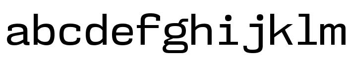 NK57MonospaceRg-Regular Font LOWERCASE
