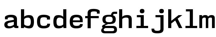 NK57MonospaceSb-Regular Font LOWERCASE