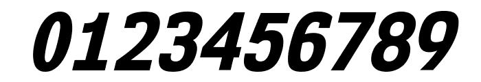 NK57MonospaceScEb-Italic Font OTHER CHARS