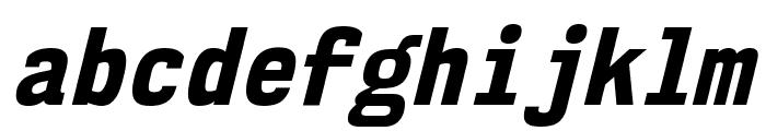 NK57MonospaceScEb-Italic Font LOWERCASE