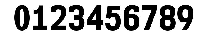 NK57MonospaceScEb-Regular Font OTHER CHARS