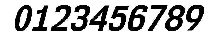 NK57MonospaceScRg-BoldItalic Font OTHER CHARS