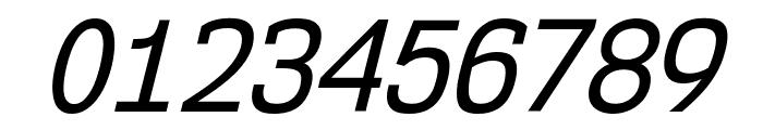 NK57MonospaceScRg-Italic Font OTHER CHARS