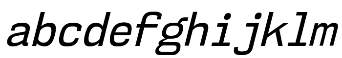 NK57MonospaceScRg-Italic Font LOWERCASE