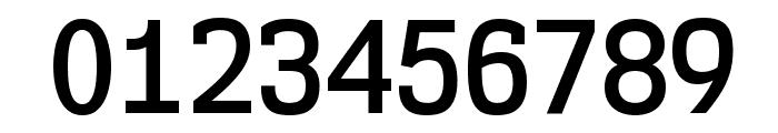 NK57MonospaceScSb-Regular Font OTHER CHARS