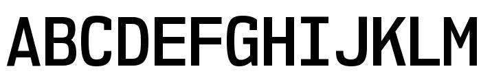 NK57MonospaceScSb-Regular Font UPPERCASE