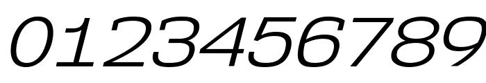 NK57MonospaceSeBk-Italic Font OTHER CHARS