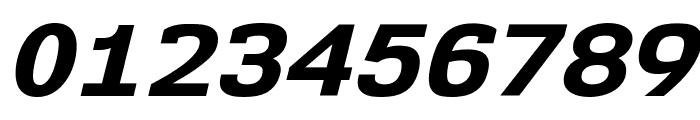 NK57MonospaceSeEb-Italic Font OTHER CHARS