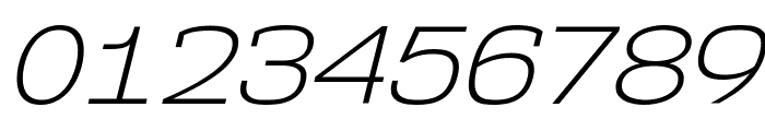 NK57MonospaceSeLt-Italic Font OTHER CHARS