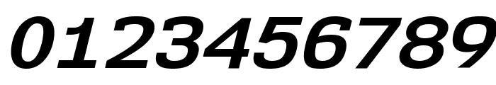 NK57MonospaceSeRg-BoldItalic Font OTHER CHARS