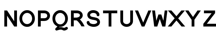 NotCourier-sans-Bold Font UPPERCASE