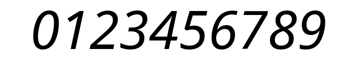 Noto Sans Italic Font OTHER CHARS