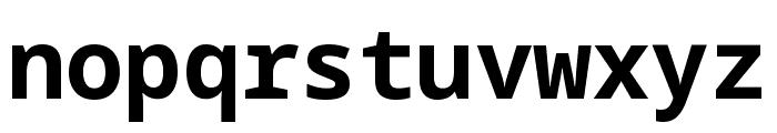 Noto Sans Mono Bold Font LOWERCASE