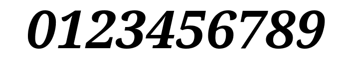 Noto Serif Bold Italic Font OTHER CHARS