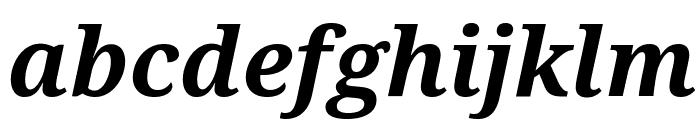 Noto Serif Bold Italic Font LOWERCASE