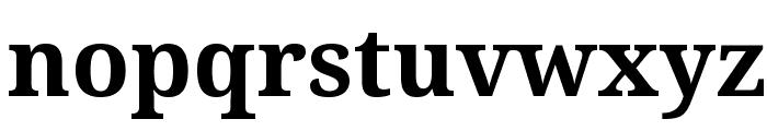Noto Serif Bold Font LOWERCASE