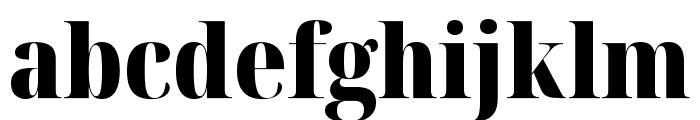 Noto Serif Display Condensed Black Font LOWERCASE