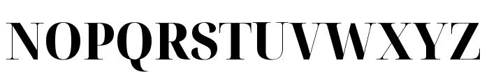 Noto Serif Display SemiCondensed ExtraBold Font UPPERCASE