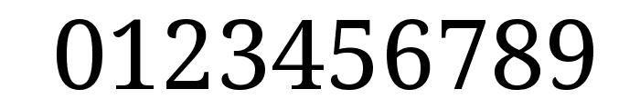 Noto Serif Font OTHER CHARS
