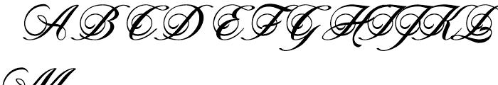 Novido Normal Font UPPERCASE