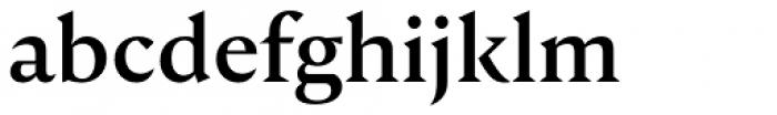 Nocturne Serif Medium Font LOWERCASE