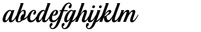 Noelia Script Pro Font LOWERCASE