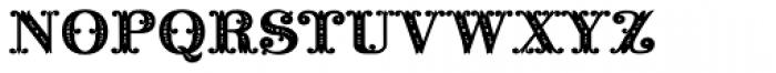Noir Monogram Ornate (10000 Impressions) Font LOWERCASE