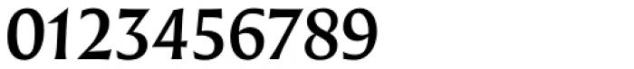 Nomada Incise Medium Italic Font OTHER CHARS