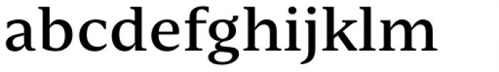 Nomada Serif Medium Font LOWERCASE