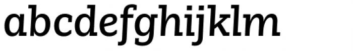 Nomada Slab Medium Italic Font LOWERCASE