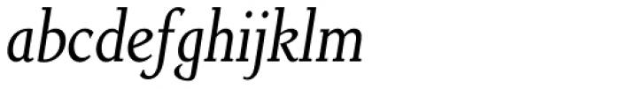 Non Solus Italic Font LOWERCASE