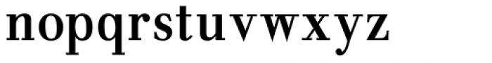 NoraPen Roman Condensed Font LOWERCASE