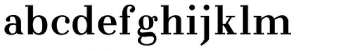 NoraPen Roman Font LOWERCASE