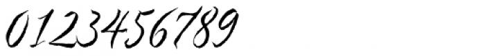 Nori Font OTHER CHARS